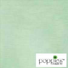 Mint Green 33cm 2ply Napkins (2000 Pack)