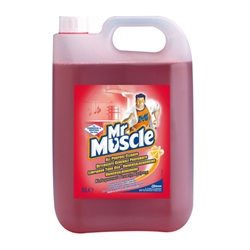 Mr Muscle All Purpose Cleaner (2x5L Pack)