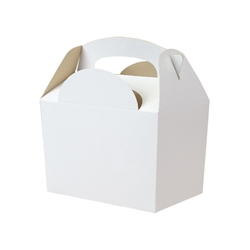 White paperboard box with handle