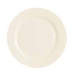 "Intensity Plate 10"" 25.4cm (24 Pack) Intensity, Plate, 10"", 25.4cm"