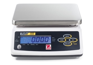 Valor Scales 1000