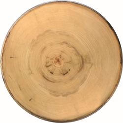 "Elm Footed Round Platter 13.5"" / 35cm (2 Pack)"