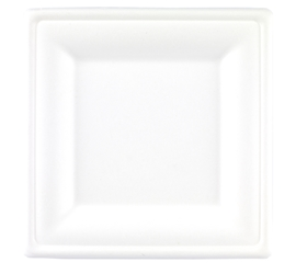 20cm  Square Bagasse Plate (4 x 125 Pack)