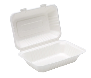 "9"" x 6"" Bagasse Lunch Box (2 x 125 Pack)"